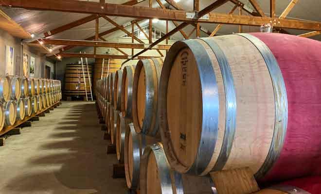 Dégustations de vins chez Cloudy Bay