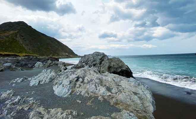 Plage au Cap Palliser avec la mer turquoise