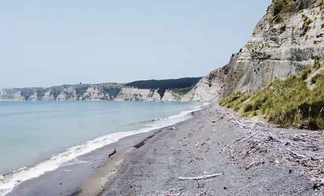 La plage et les falaises