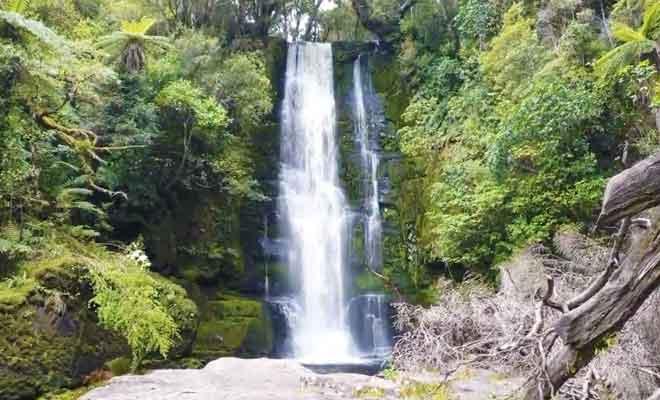 Le parcours pour rejoindre la cascade dans les Catlins