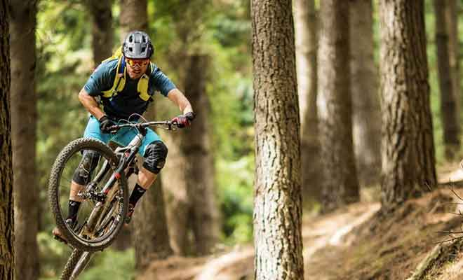Piste de VTT : Lord of the Possums