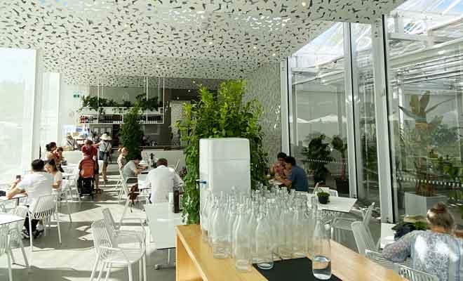 Ilex Café dans le Botanical Garden