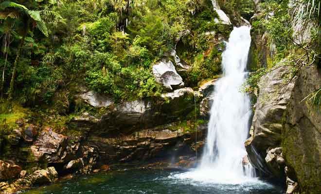 Randonnée Wainui Falls Track