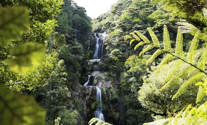 Randonnée aux Kitekite falls.