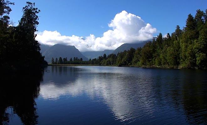 Les anguilles géantes du lac Matheson peuvent être observées en s'approchant de la rive.