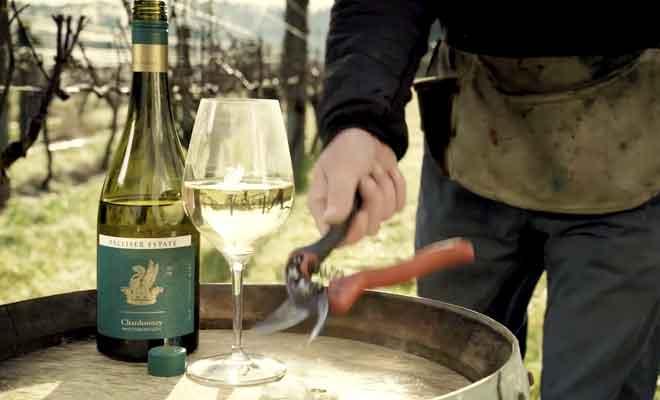 Palliser Estate Wines