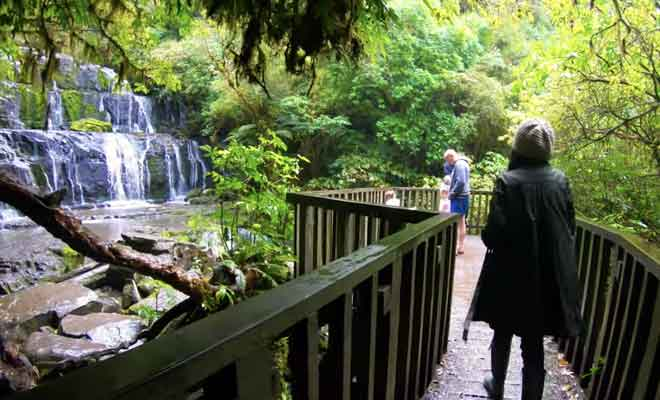 Le parcours à suivre en forêt jusqu'à la cascade