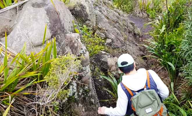 Wairake Track sur les flancs du volcan