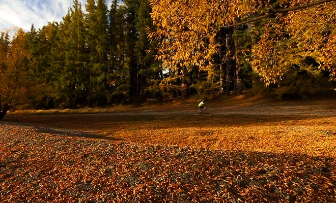 L'automne est une saison très intéressante pour les voyageurs, car les prix sont revus à la baisse alors que le paysage reste fantastique