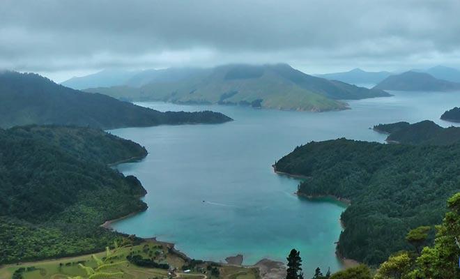 D'innombrables espèces endémiques comme le kiwi, le weka ou le tekapo font de la Nouvelle-Zélande une destination privilégiée pour les amoureux de la nature.