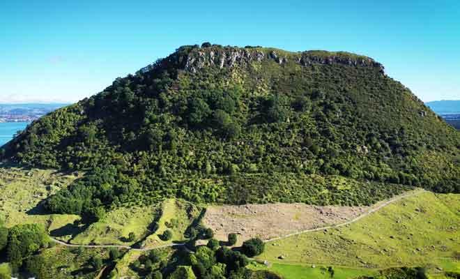 Survol Tauranga en drone
