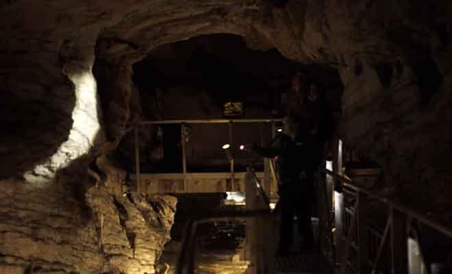 Visite des grottes avec Real Journeys