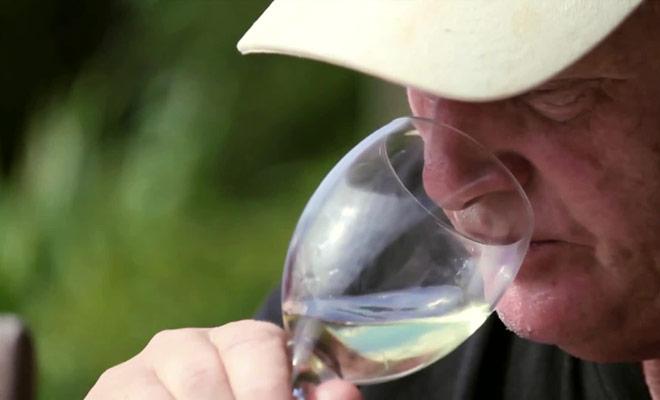 Tout ce qu'il faut savoir sur la dégustation de vins en Nouvelle-Zélande est expliqué dans ce reportage.