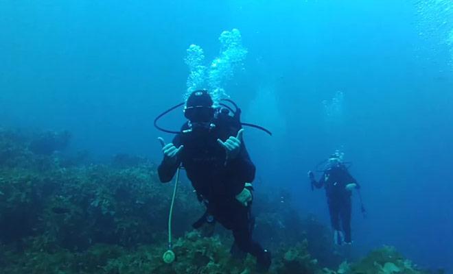 Ce reportage donnera une idée précise le déroulement d'une plongée sous-marine en Nouvelle-Zélande.