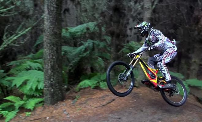 Assisté à des compétitions de vélo dans la forêt de Redwood.