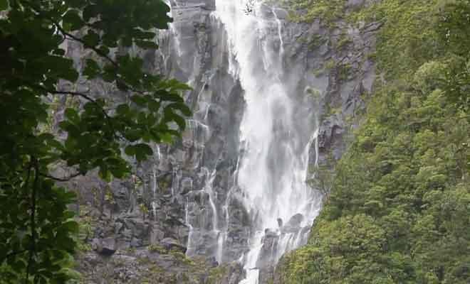 Randonnée aux Wairere Falls