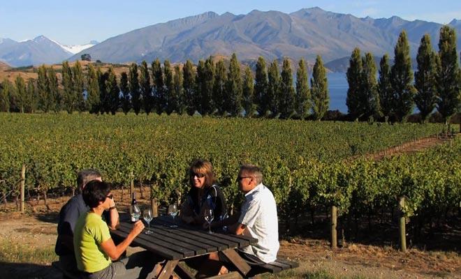 Certains vignobles disposent de tables de camping. C'est le cas de Rippon Vineyard où vous pouvez aussi commander des plateaux de charcuteries et fromages.